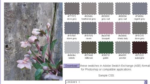 palette generator bighugelabs.com 2