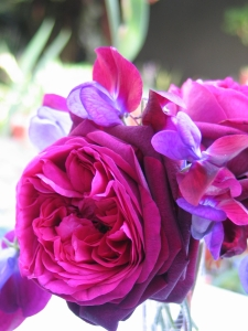 'The Prince' Rose and 'Cupani' heirloom Sweet Pea blossoms