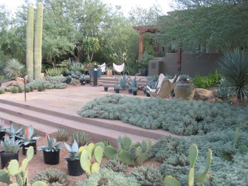 11 Desert Botanical Garden 51