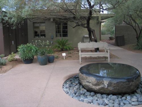 12 Desert Botanical Garden 54