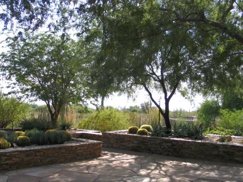 14 Desert Botanical Garden 12