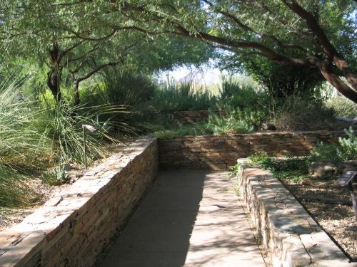 15 Desert Botanical Garden 16