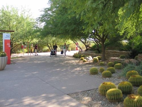 18 Desert Botanical Garden 26