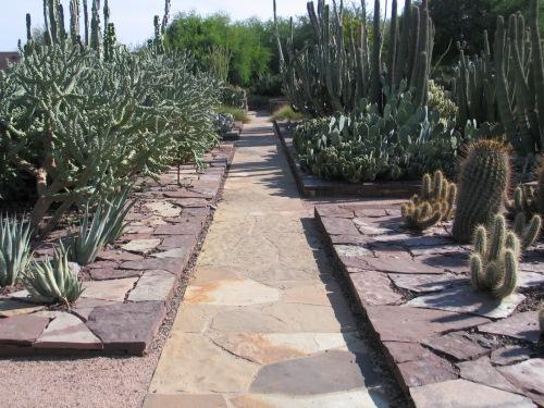 Desert Botanical Garden In Phoenix De Graaf Design
