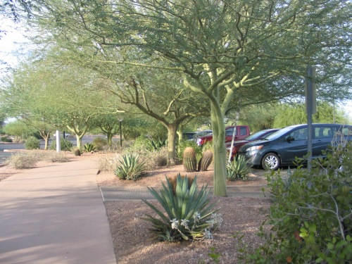 29 Desert Botanical Garden parking 1