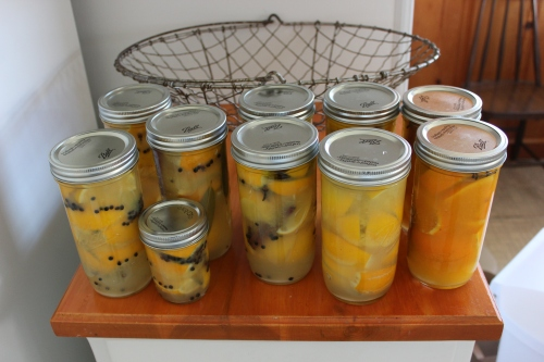 9 Preserved lemons and oranges